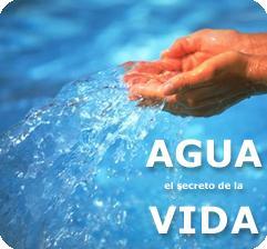 """Dispensadores y Fuentes de Agua """"AGUAVIP"""" Tarifas Planas y ¡PRUEBA GRATIS!"""